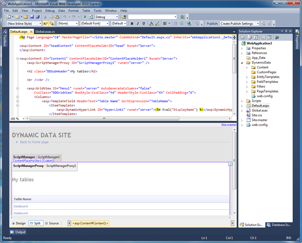 Visual studio 2010 with visual web developer windows