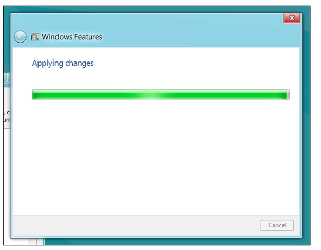 IIS  progress screen